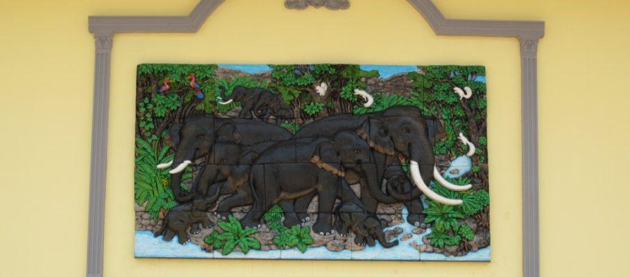 9 Elephants