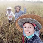 Friends cutting rice