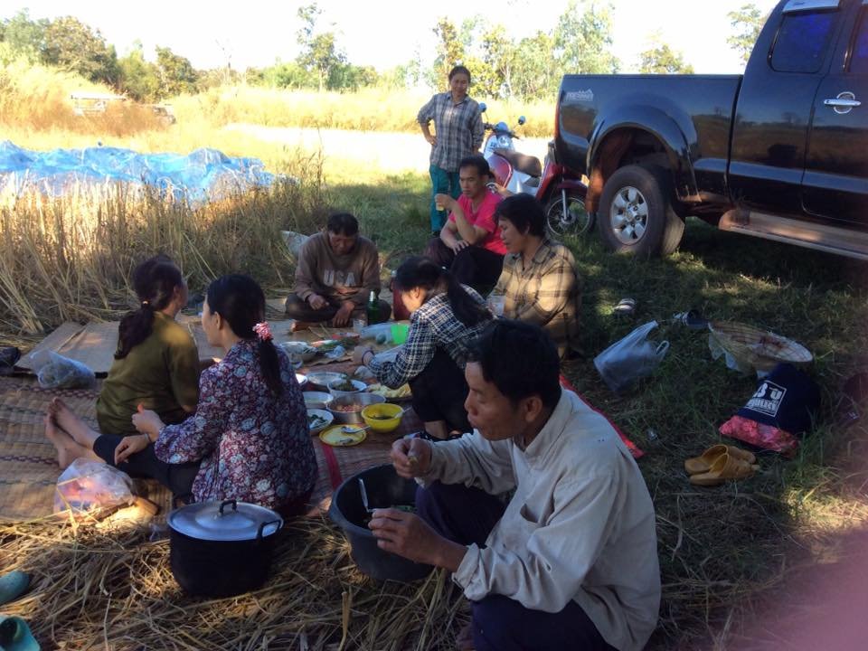 Rice field lunch