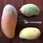 Garden mango's