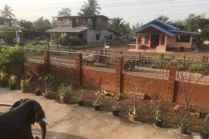 Empty front garden