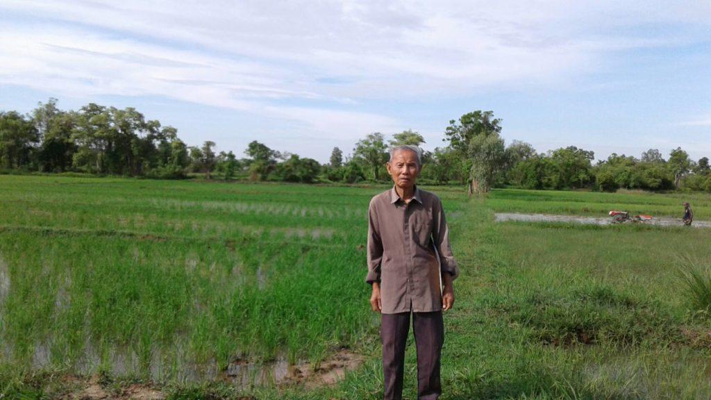 Papa on rice field