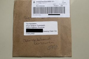 RDW letter